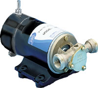 PUMP REVERSIBLE 12V FITS OIL CHANGER (17800-1000)